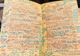 Finnegans wake annotations.